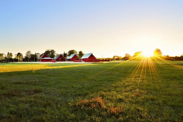 Elementos de poliéster para explotaciones ganaderas y agrícolas
